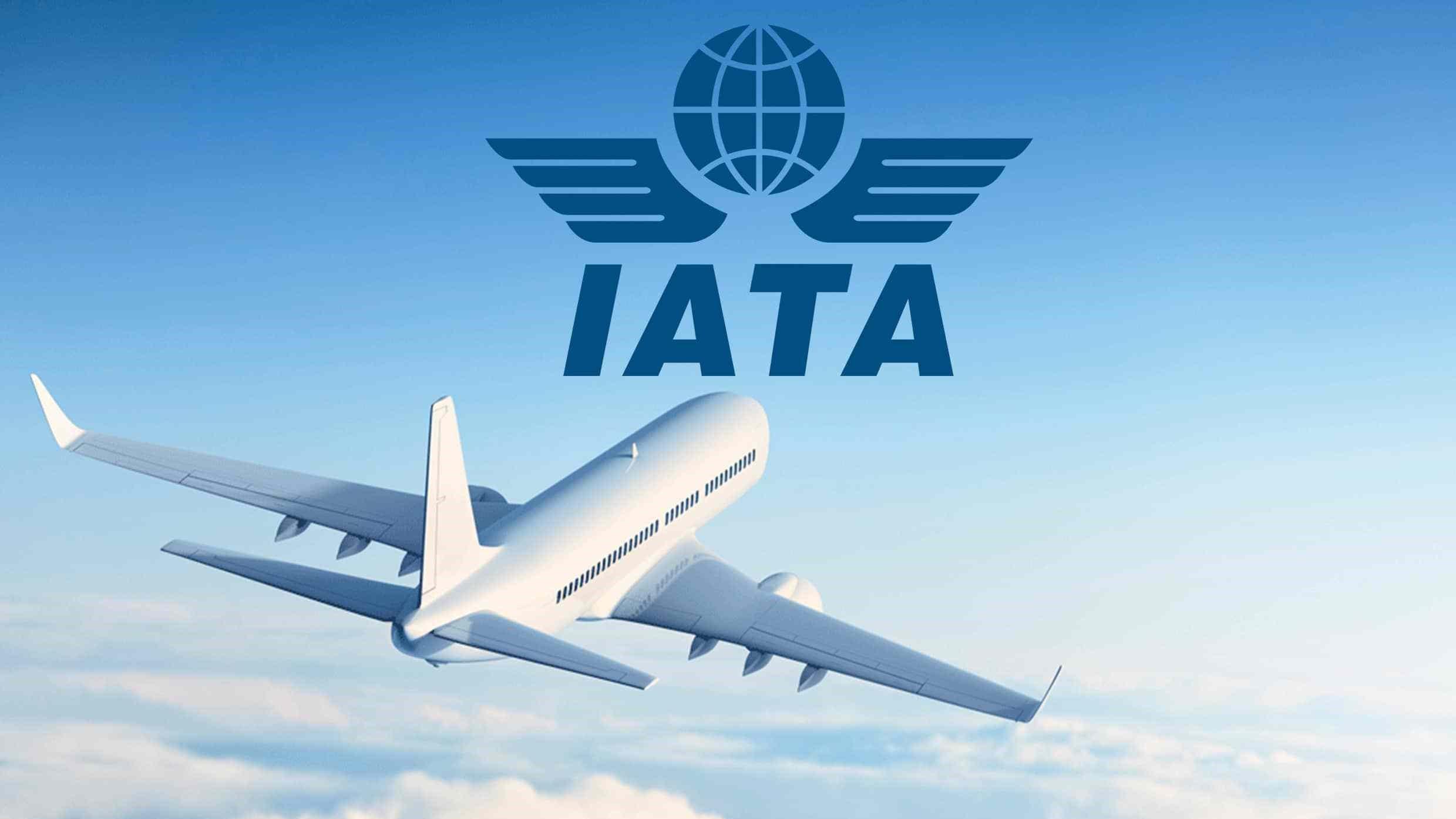 IATA report exposes sharpest cargo drop ever 1