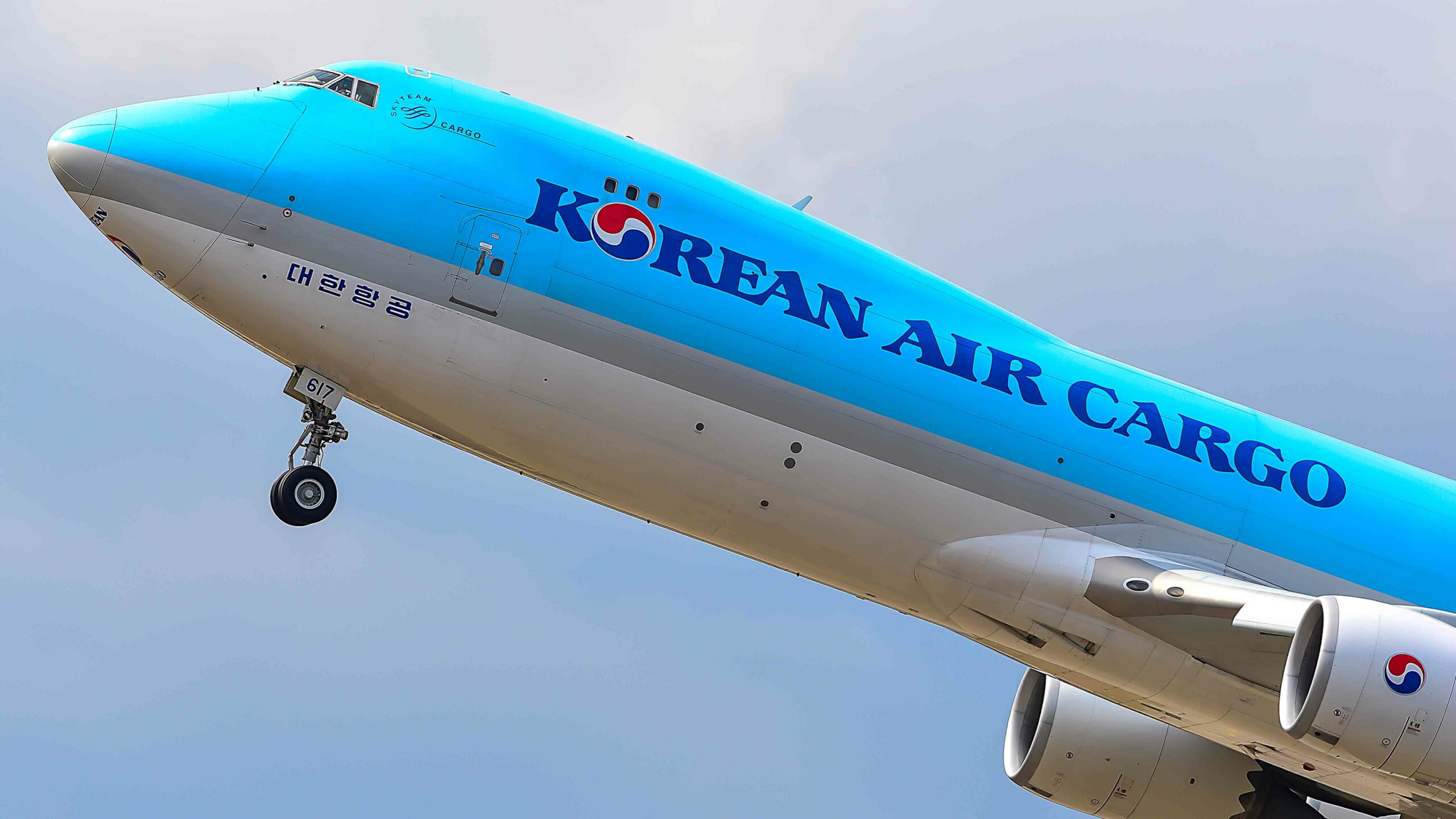 Korean Air into black figures thanks to cargo traffic - Your
